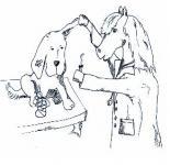 Handreichung zur Umsetzung des KMK-Rahmenlehrplans für den neu geordneten Ausbildungsberuf Tiermedizinischer Fachangestellter / Tiermedizinische Fachangestellte Fachstufen I und II (Heft 4/2008)