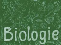 Individualität und Entwicklung. Biologie TF 10 (Heft 2/2020)